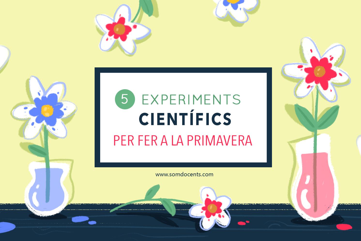 Experiments ciències SD
