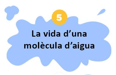 SD_7_dades_curioses_sobre_el_cicle_de_l_aigua 05